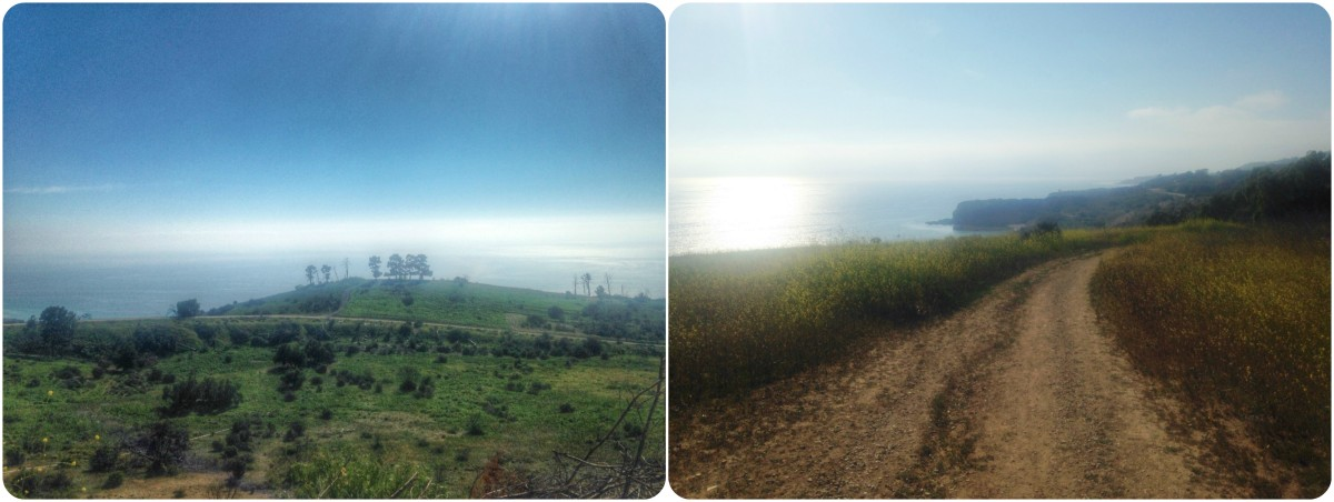 Sunshine and a Palos Verdes Hike