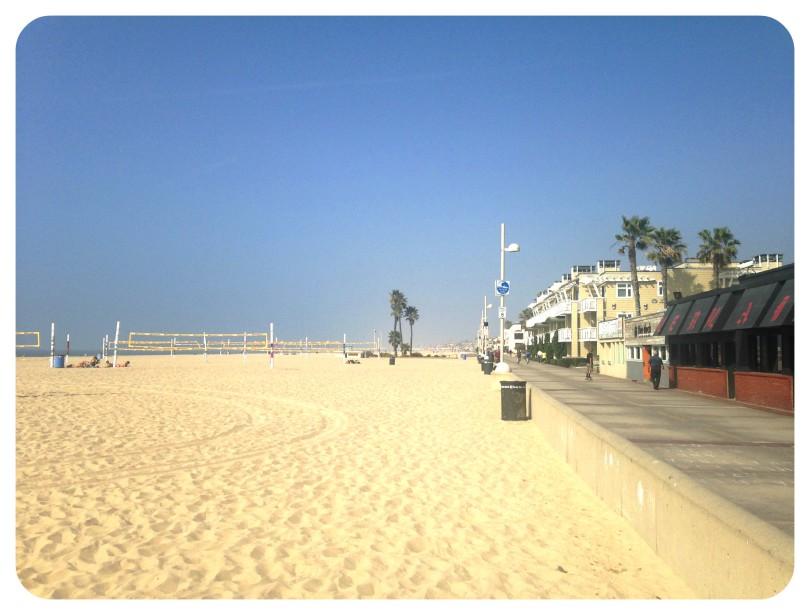 hermosa, manhattan, beach, volleyball, run, running, running trail, dog, shawn oak man, lego, the bachelor
