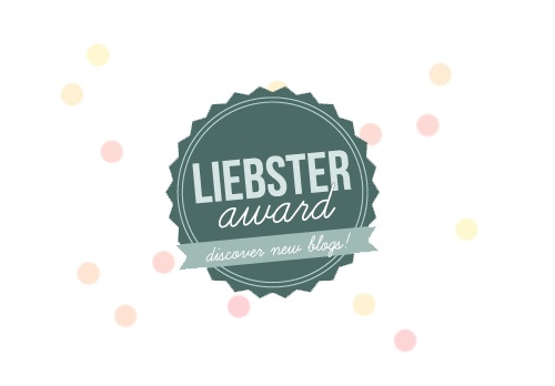 blogger award, liebster, thefirst2hours