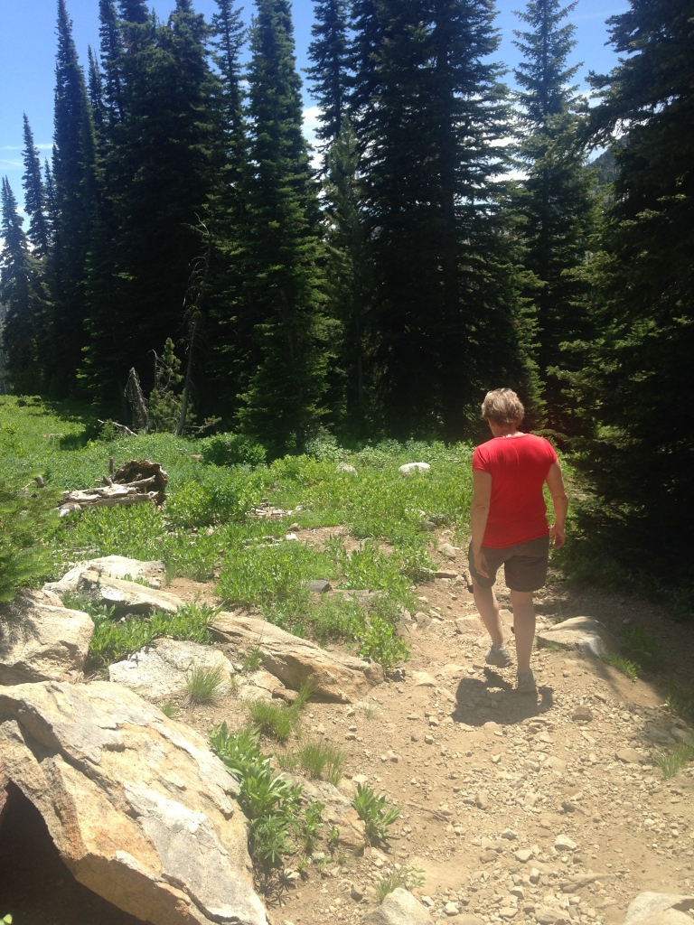 idaho, blue lake, mountains, hiking, hike, trails, nature, oxygen, sky, cascade, mccall, fitness, exercise, weight loss