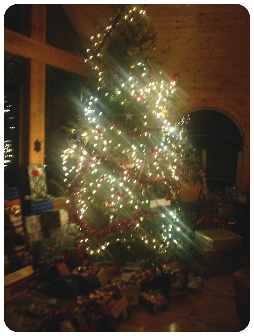 Cutting down Christmas tree in Idaho, christmas tree hunting, holiday traditions, how to stay fit during the holidays